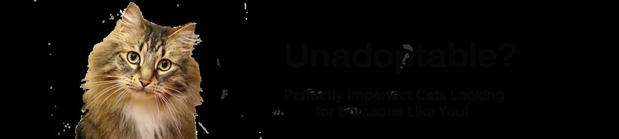 www.unadoptable.org